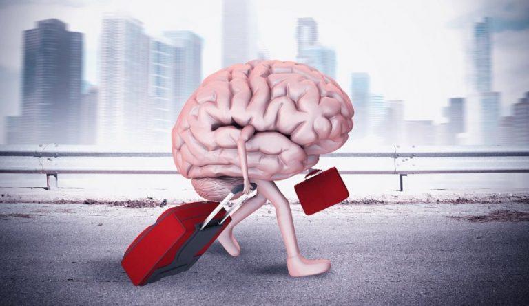 утечка мозгов эмиграция образование